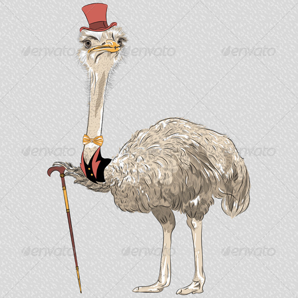 Ostrich Bird Hipster - Animals Characters