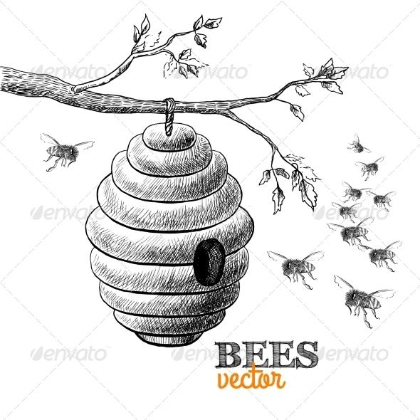 Honey Bees - Animals Characters
