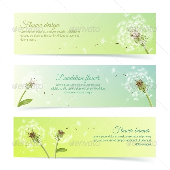 Dandelion Banners - Borders Decorative