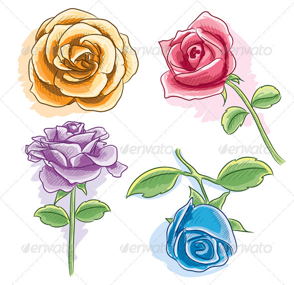 Watercolor Rose - Organic Objects Objects