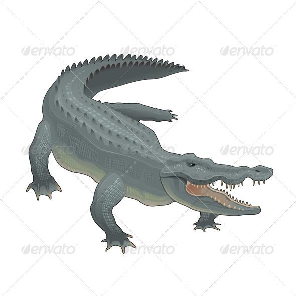Crocodile. - Animals Characters