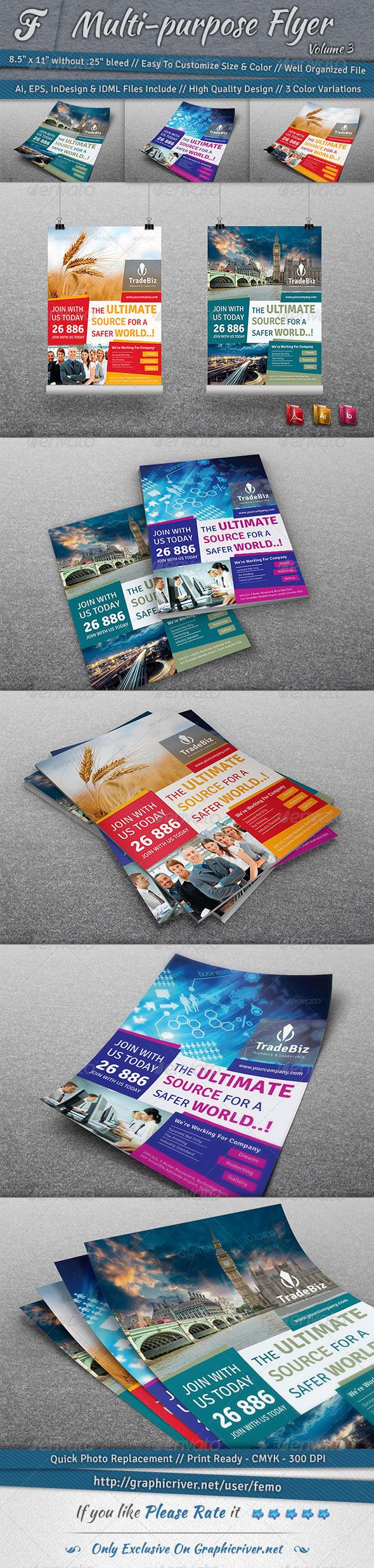Multi-purpose Flyer | Volume 3 - Corporate Flyers