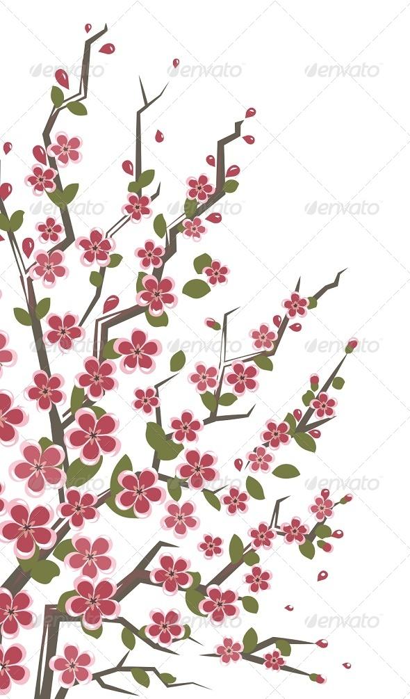 Sakura Branch Floral Background - Flowers & Plants Nature