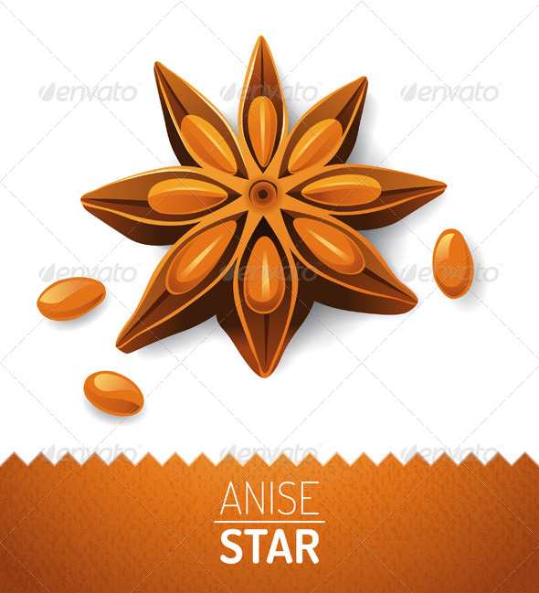 Anise Star - Food Objects