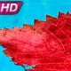 Arrival of Autumn - VideoHive Item for Sale