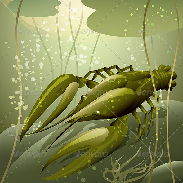 The Crayfish - Animals Characters