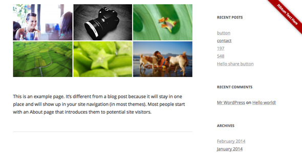 Ribbon Panel WordPress Plugin - CodeCanyon Item for Sale