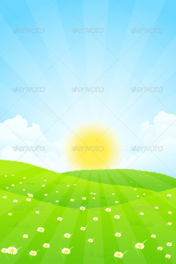 Green Landscape with Sun - Landscapes Nature