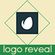 Elegant Clean Logo Reveal - VideoHive Item for Sale