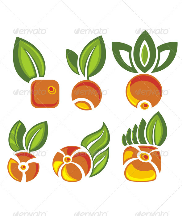 Fruits Labels with Green Leaves - Food Objects