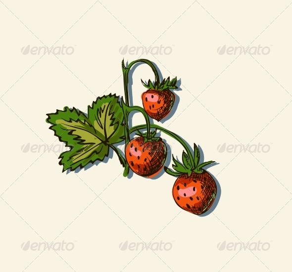 Drawing of Strawberry - Food Objects