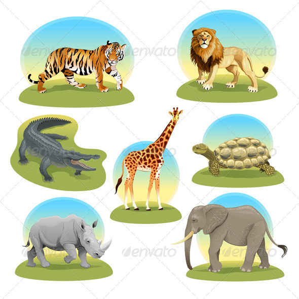 African Animals with Graphic Backgrounds - Animals Characters
