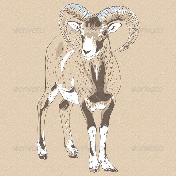 Alpine Ibex - Animals Characters