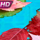 Bright Autumn  - VideoHive Item for Sale