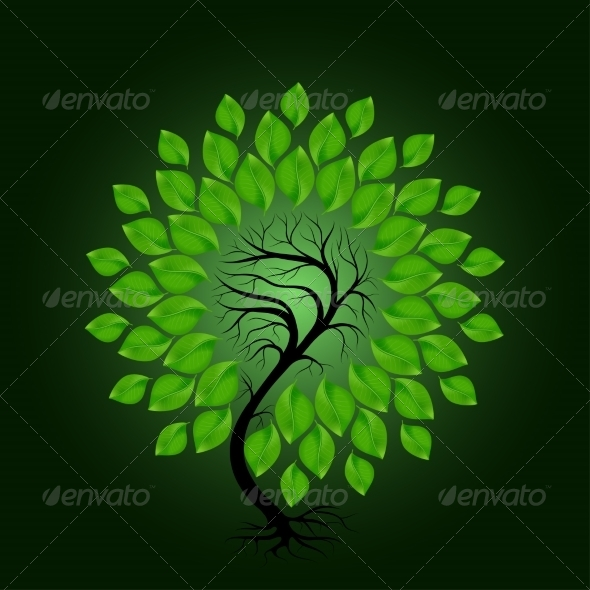Tree with Green Leafage on Dark Green Background - Flowers & Plants Nature
