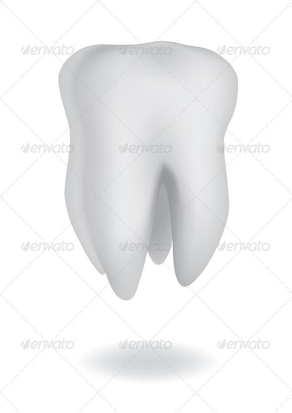 Tooth - Health/Medicine Conceptual