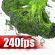 Broccoli in Water - VideoHive Item for Sale