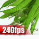 Green Beans - VideoHive Item for Sale