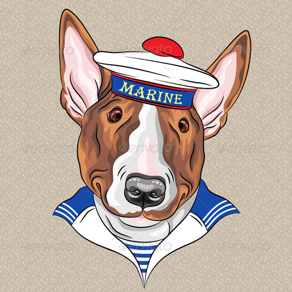 Cartoon Hipster Bullterrier Dog Sailor - Animals Characters