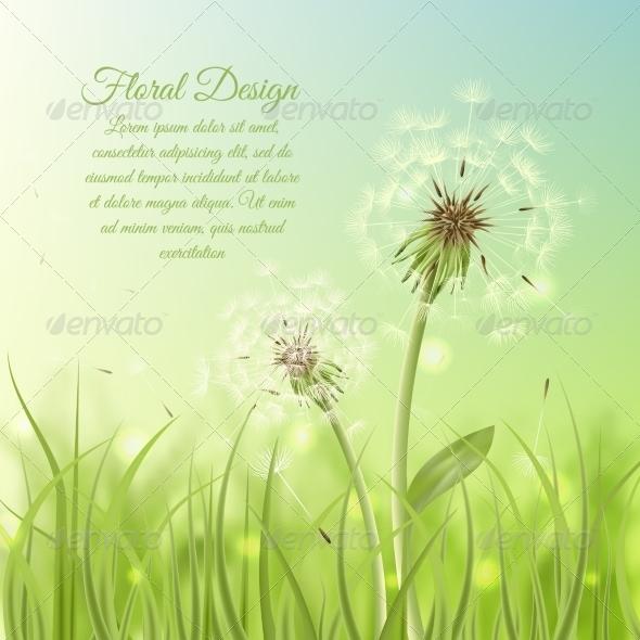 Dandelion Background - Flowers & Plants Nature