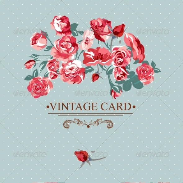 Vintage Floral Lace Background with Roses  - Patterns Decorative