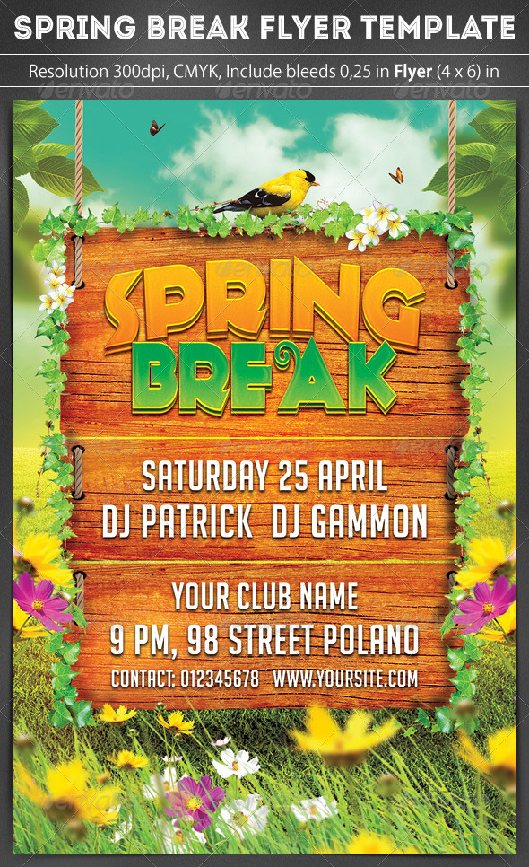Spring Break Party Flyer By Grapulo | Graphicriver