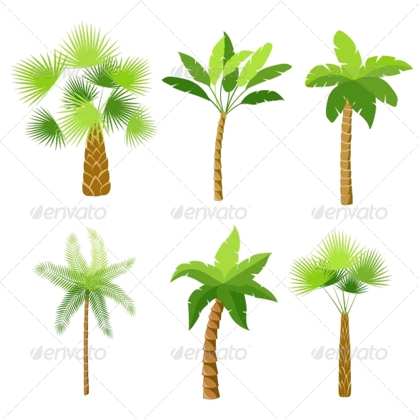 Palm Trees Set - Web Elements Vectors
