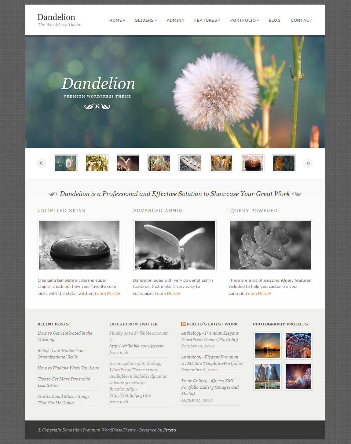 what wordpress template is this - dandelion powerful elegant wordpress theme by pexeto