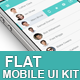 Business Flat Mobile UI Kit - GraphicRiver Item for Sale