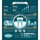Tooth Infographic - GraphicRiver Item for Sale