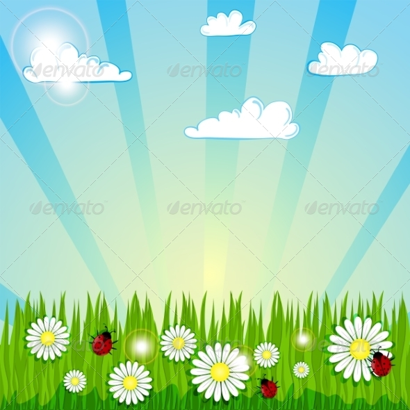 Summer Background - Backgrounds Decorative