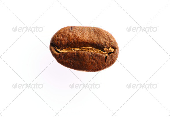 Coffee bean - Stock Photo - Images