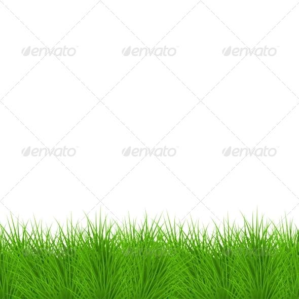 Modern Grass Background - Seasons Nature