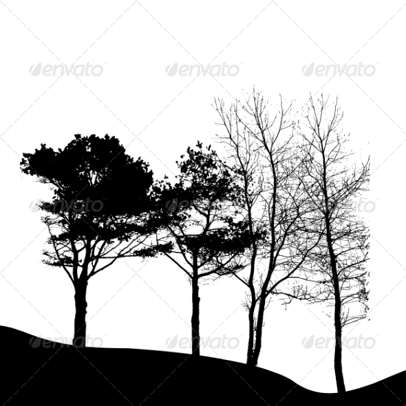 Tree Silhouette Isolated on White Background - Seasons Nature