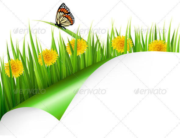 Summer Background with Dandelions and Butterfly - Flowers & Plants Nature