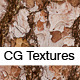 Realistic Pine Bark Textures  - 3DOcean Item for Sale