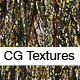 Realistic Willow Bark Textures  - 3DOcean Item for Sale