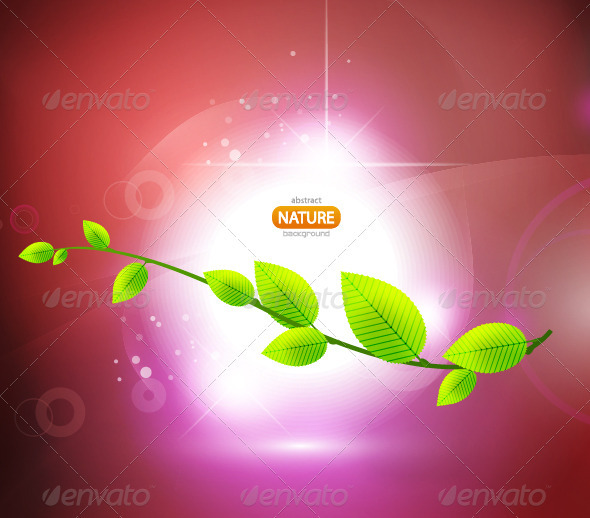 Abstract nature background - Flowers & Plants Nature