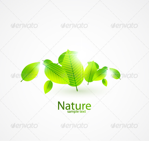 Nature background - Flowers & Plants Nature