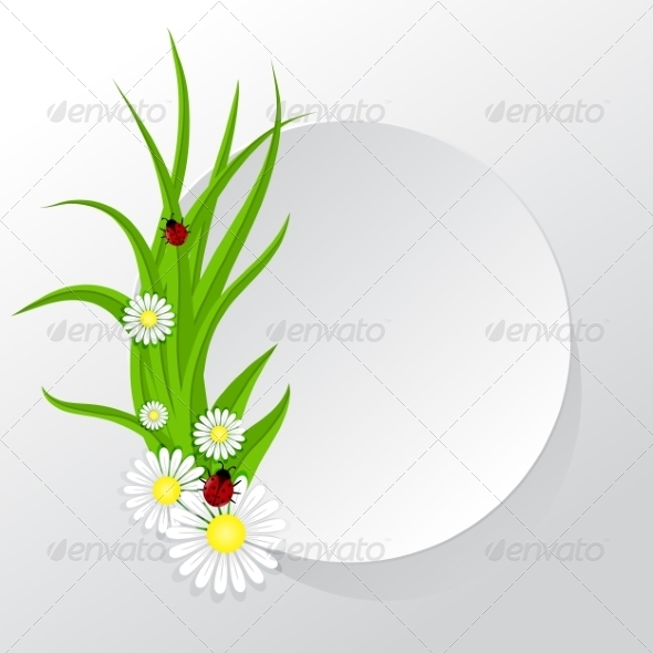 Circle Frame with Grass and Chamomiles - Flowers & Plants Nature