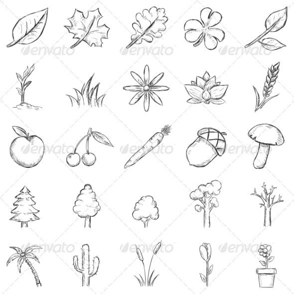 Vector Set of Sketch Plants Icons - Flowers & Plants Nature