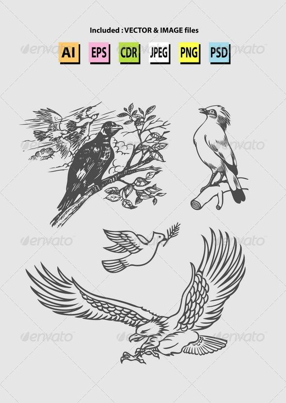 Bird Sketches Vector - Animals Characters