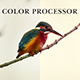 Color Processor Action - GraphicRiver Item for Sale