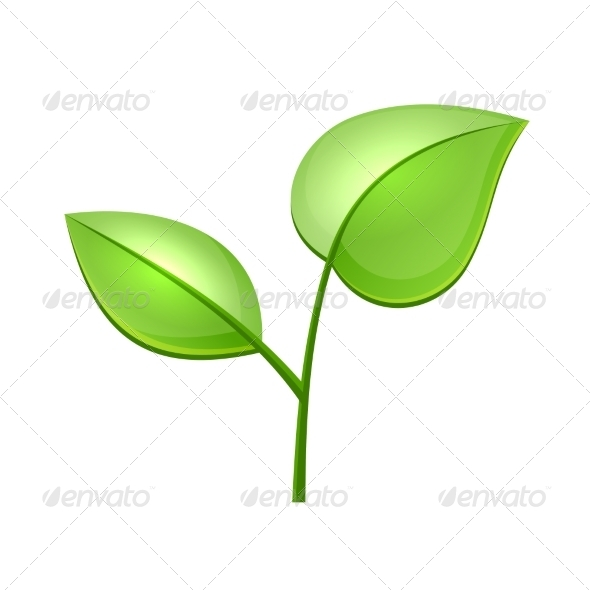 Ecology Concept Icon with Glossy Green Leaves - Flowers & Plants Nature
