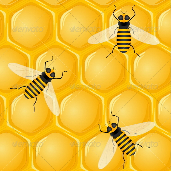 Bees and Honeycombs - Nature Conceptual