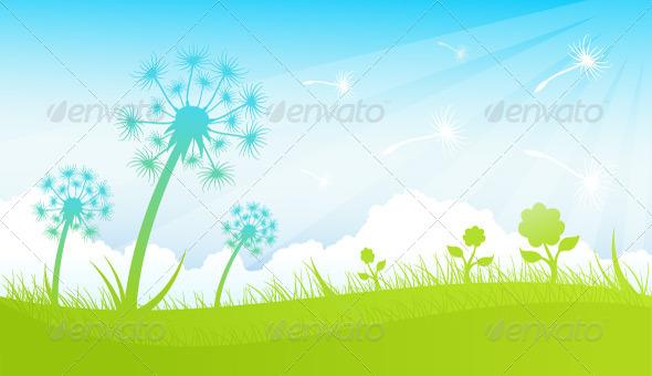 Dandelions - Flowers & Plants Nature