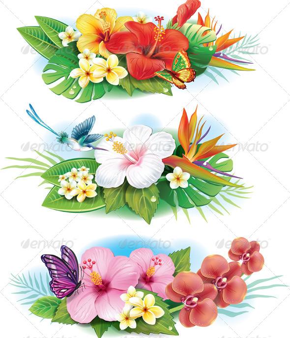 Arrangement of Tropical Flowers - Flowers & Plants Nature