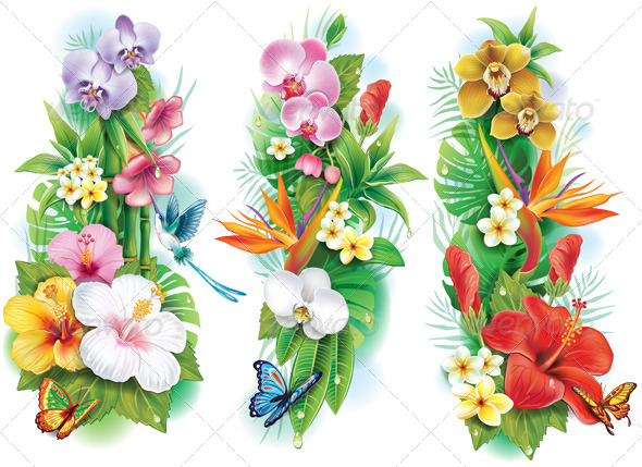 Arrangement of Tropical Flowers and Leaves - Flowers & Plants Nature