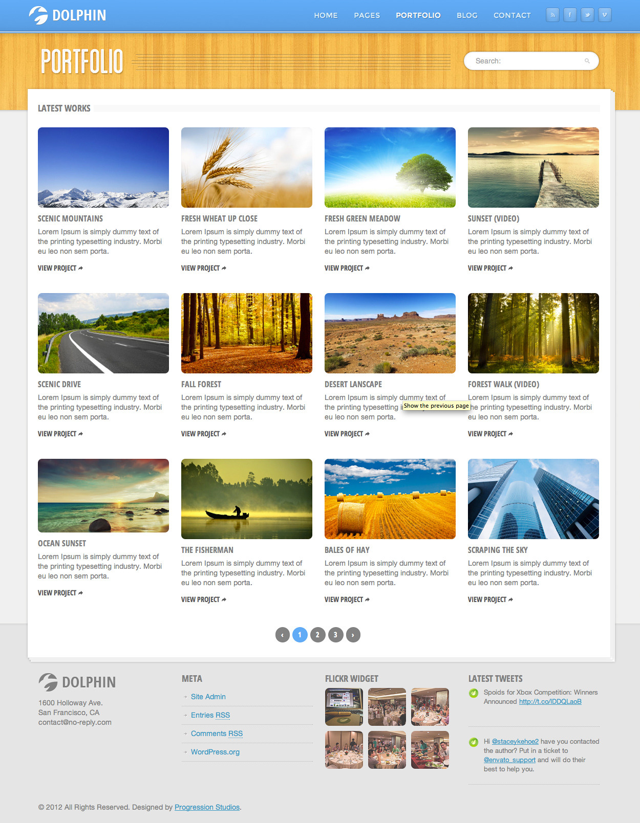 Dolphin - Responsive Site Template by ProgressionStudios | ThemeForest