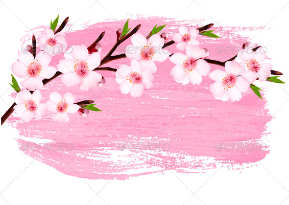 Pink Paint Sakura Branch Banner - Flowers & Plants Nature